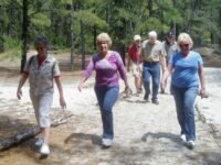 Easy Striders - Walk Delaware & Senior Group Challenge